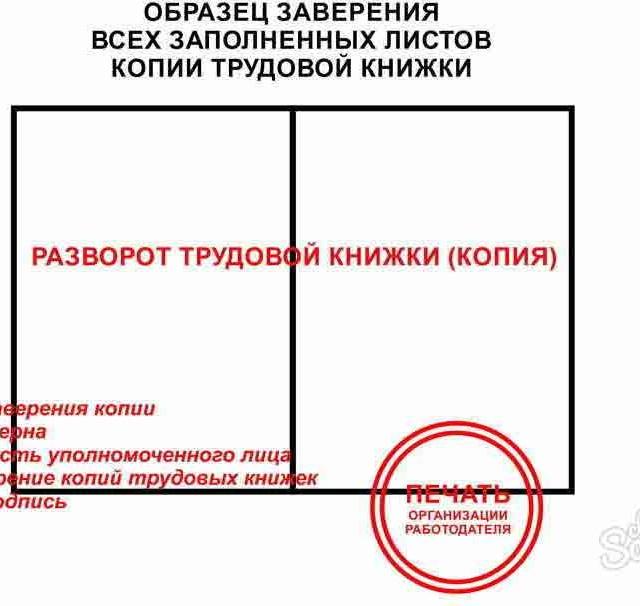 приказ о праве заверять копии документов образец - фото 11